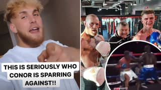 Jake Paul Calls Out Conor McGregor Protege For Next Fight As Feud Heats Up