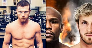 Canelo Alvarez Slams YouTuber Fights Like Floyd Mayweather Vs Logan Paul