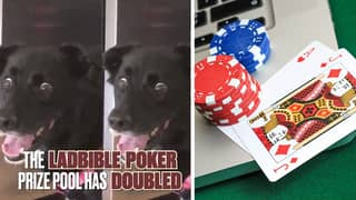The LADbible Poker Guaranteed Prize Pool Has DOUBLED
