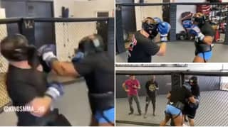 Mike Tyson Batters Sparring Partner In A Cage As His Team Tease Potential MMA Fight
