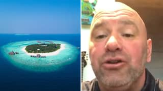 UFC Are Securing A Private Island To Stage Fights
