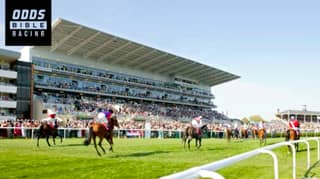 Danny Archer's Saturday Selections From Newbury, Newmarket & More