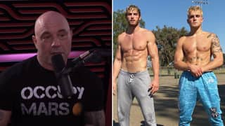 "Joe Rogan Calls Jake & Logan Paul ""Legitimate Tough Guys"" In Show Of Respect"