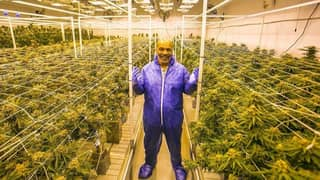 Mike Tyson And Roy Jones Jr 'Won't Be Tested For Marijuana' For Their Exhibition Bout