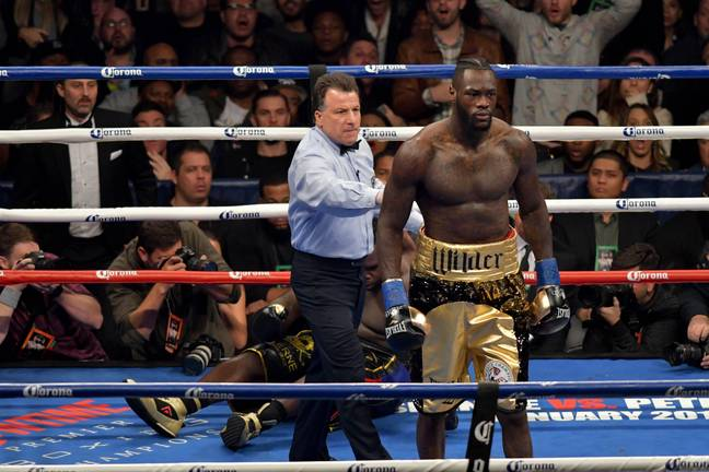 Wilder after putting Stiverne to sleep. Image: PA