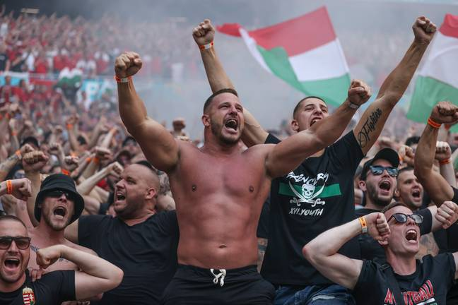 Hungary fans celebrate Fiola's opener. Image: PA Images