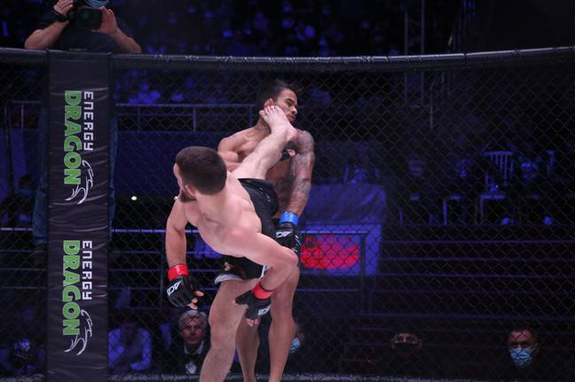 Magomed Bibulatov's knockout went viral on social media. Credit: Twitter/@ACA_League
