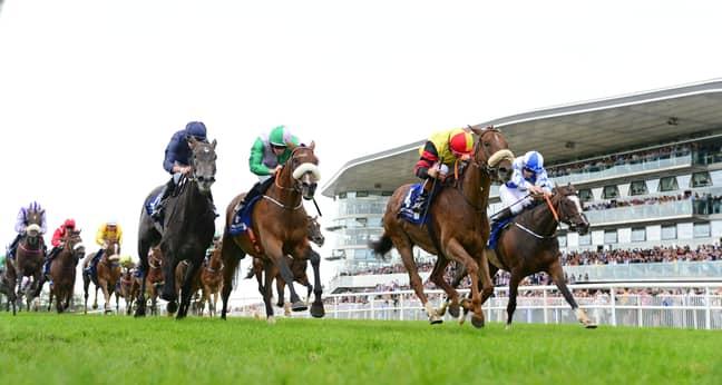 Racing At Galway