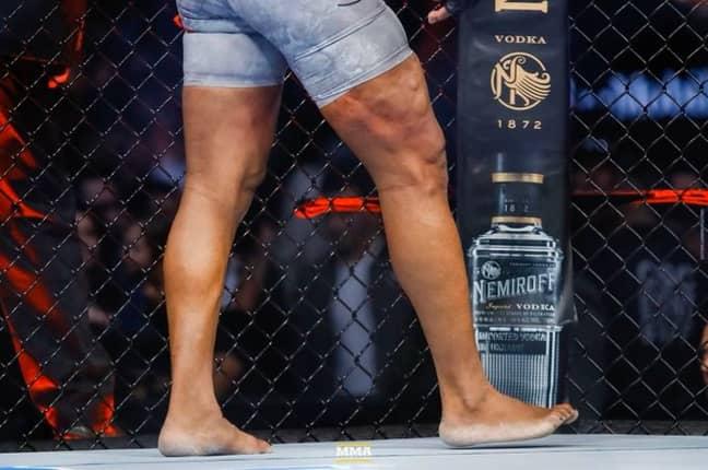 Image: MMA Fighting