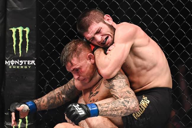 Khabib chokes out Dustin Poirier. Credit: PA