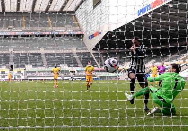 Willock scores the winner for Newcastle. Image: PA Images