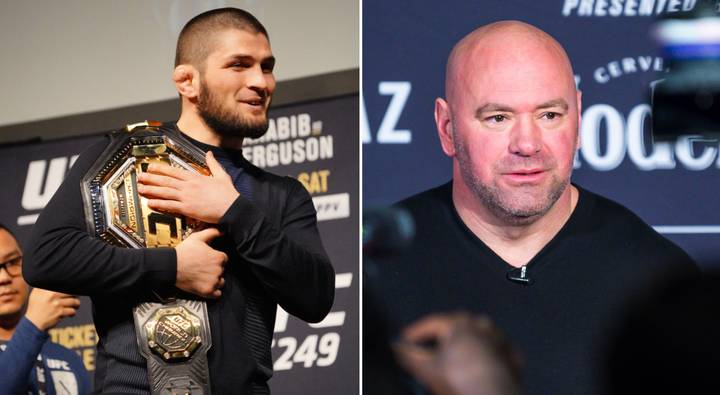 Dana White Expects Khabib Nurmagomedov To Come Out Of Retirement And Reach 30-0