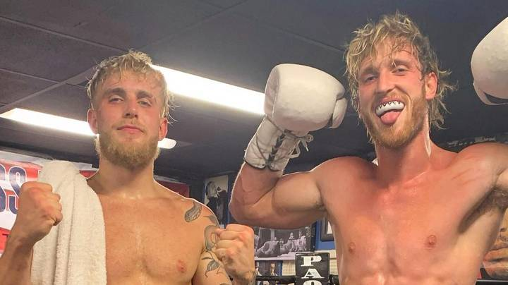 Logan Paul Challenges Brother Jake To A Boxing Match