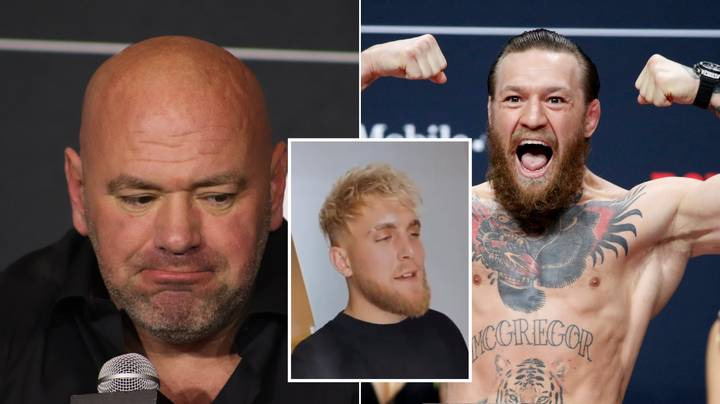 Jake Paul Ruthlessly Hits Out At Dana White And Fires Back At Conor McGregor