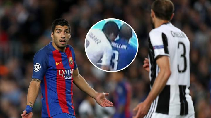 The Phone Call Luis Suarez Made To Giorgio Chiellini Ahead Of Juventus Move