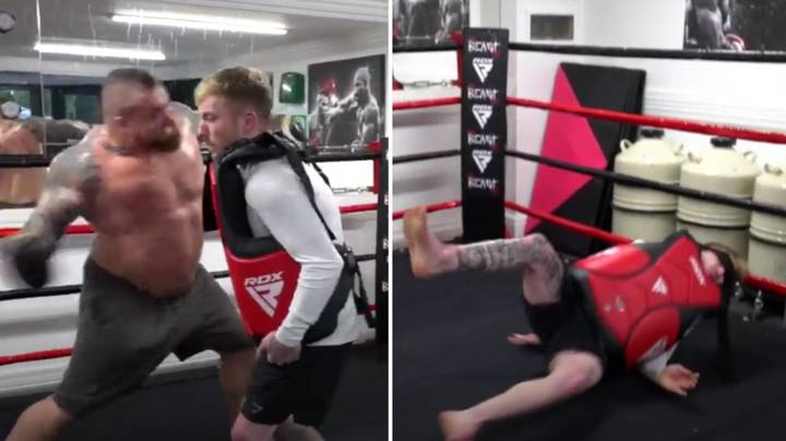 Man Takes A Punch Off World's Strongest Man Eddie Hall And It Doesn't End Well