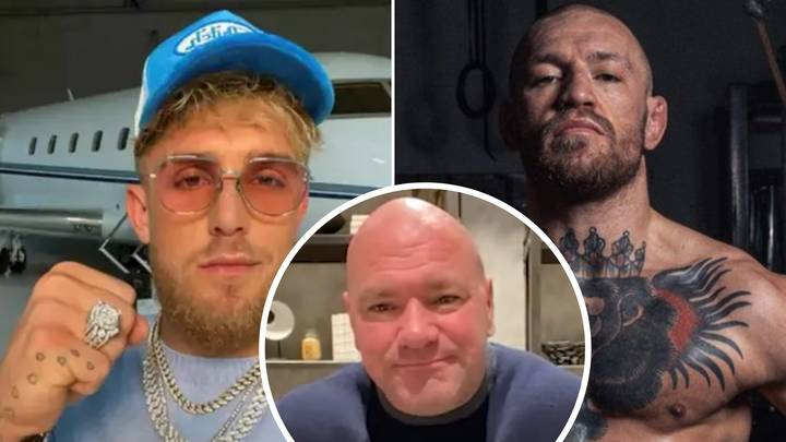 Dana White Claims Jake Paul Has 'No Chance' Of Fighting Conor McGregor