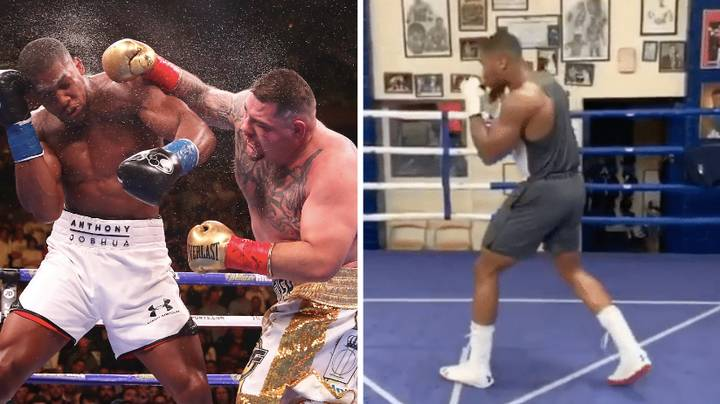 """Anthony Joshua Is Sparring """"Chubby"""" Fighters In Preparation For Andy Ruiz Jr Rematch"""