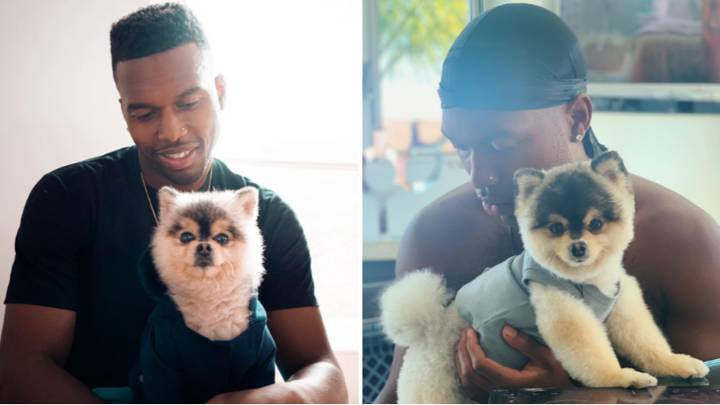 Daniel Sturridge Is 'Being Sued' By Man Who Found His Lost Dog After Allegedly Not Paying Reward Money