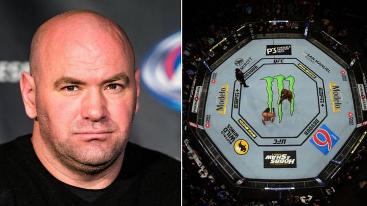 Bellator Star 'Willing To Bet Dana White '$1 Million' He Would Beat UFC Champions