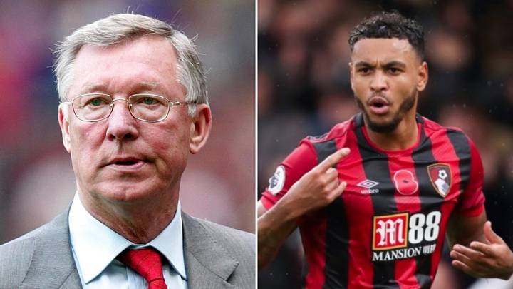 Man United Fans Will Be Excited By Sir Alex Ferguson's Verdict On Josh King