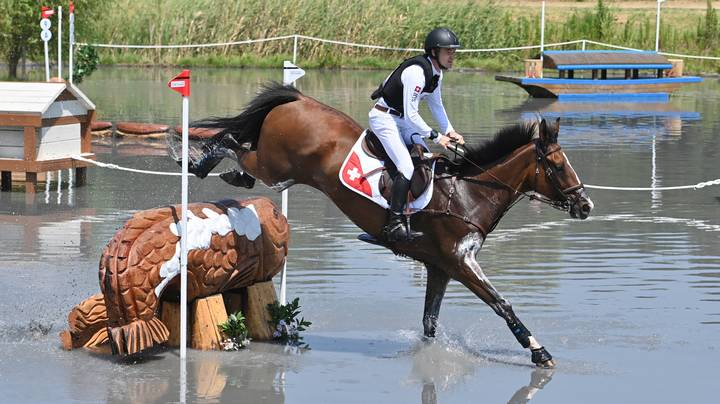 Horse Euthanised At Tokyo Olympics After Suffering Injury In Cross Country