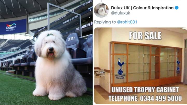 Spurs Are Being Trolled By Dulux, Just Minutes After Announcing A New Sponsorship Deal With Them