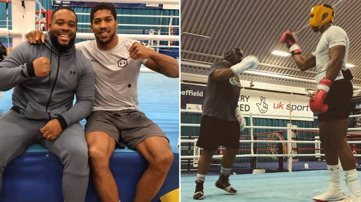 Anthony Joshua Has 'Floored Several Sparring Partners' Ahead Of Andy Ruiz Jr Rematch