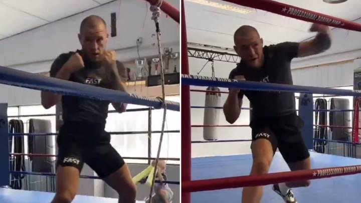 Conor McGregor's Latest Training Footage Has Fans Saying The Same Thing