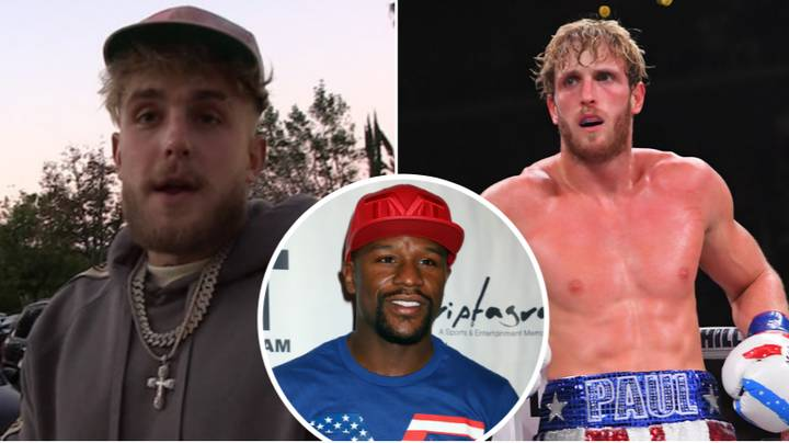 Jake Paul Ruthlessly Savages His Own Brother, Logan, For Fighting Floyd Mayweather