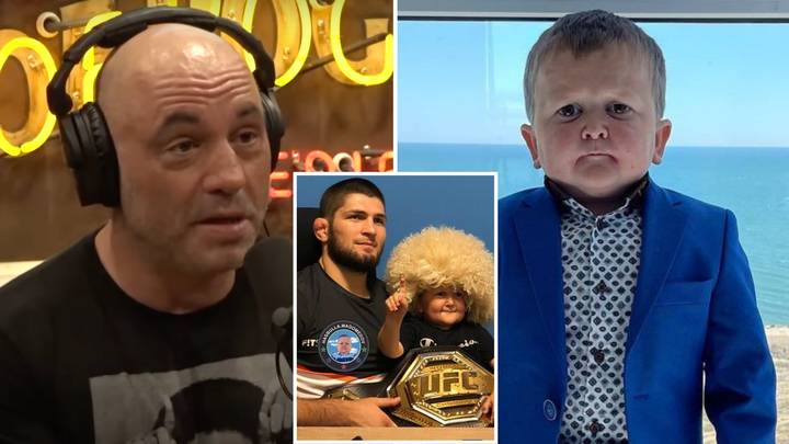 UFC Legend Joe Rogan Gives Honest Verdict On Viral TikTok Star Hasbulla Magomedov