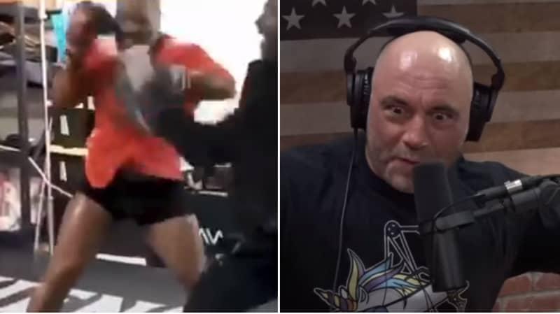 "Joe Rogan Reacts To Mike Tyson's ""Terrifying"" Training Videos"