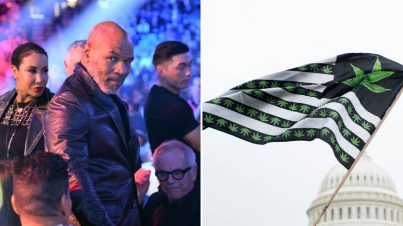 Mike Tyson Smokes £33,000 Worth Of Weed A Month