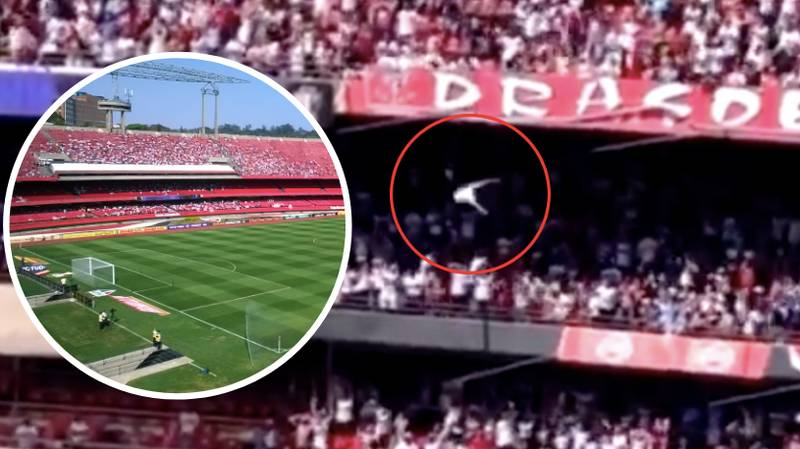 Sao Paulo Fan Miraculously Survives Terrifying 40ft Fall From Top Tier Of Stadium