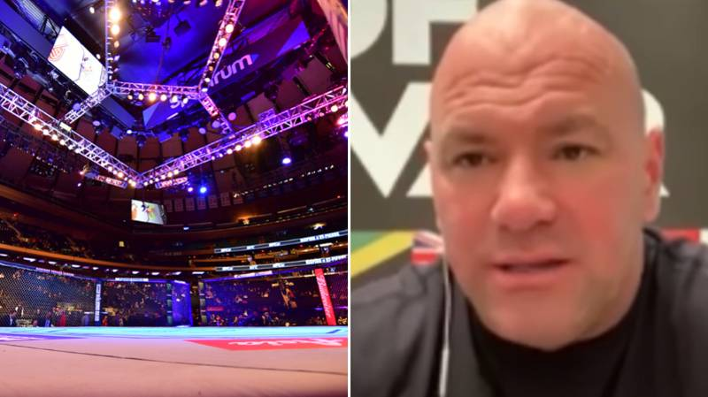 Dana White Names His UFC GOAT And The Best Fighter Right Now