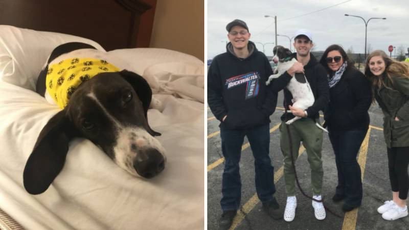 How These Football Fans Helped Unite Christian Pulisic With His Dog For Christmas