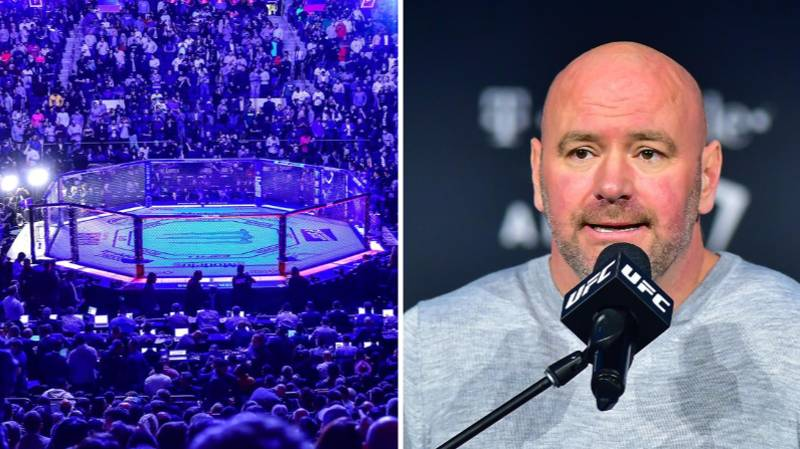 Dana White Puts An End To UFC Super Fight Speculation