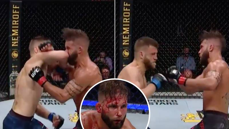 Calvin Kattar Produces Stunning 'Standing' Elbow Strike To Finish Jeremy Stephens At UFC 249