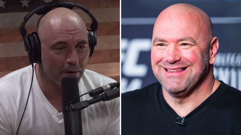 Joe Rogan Proposes Game-Changing Idea To Transform UFC Fights Forever