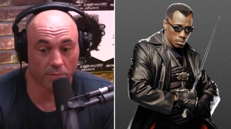 Joe Rogan Details Exactly How Close He Came To Fighting Wesley Snipes In The UFC